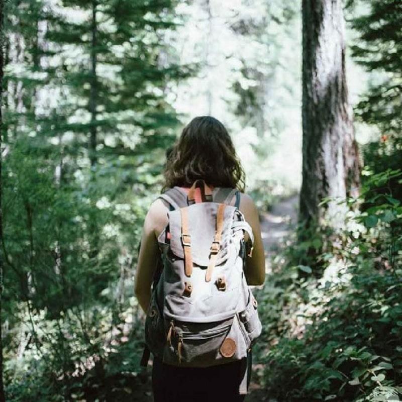 Senderismo y Observación de la Naturaleza